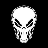 Default skull white ipad