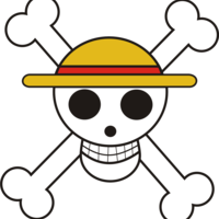 Default one piece jolly roger